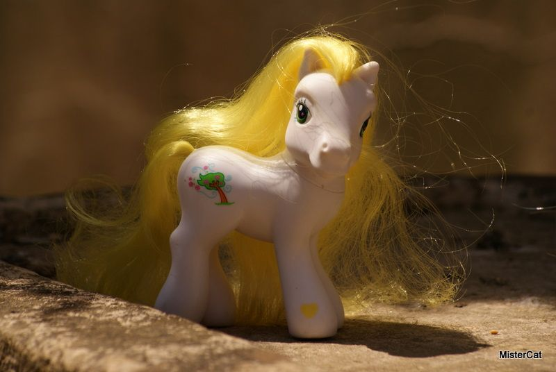 mon petit poney hasbro my little pony