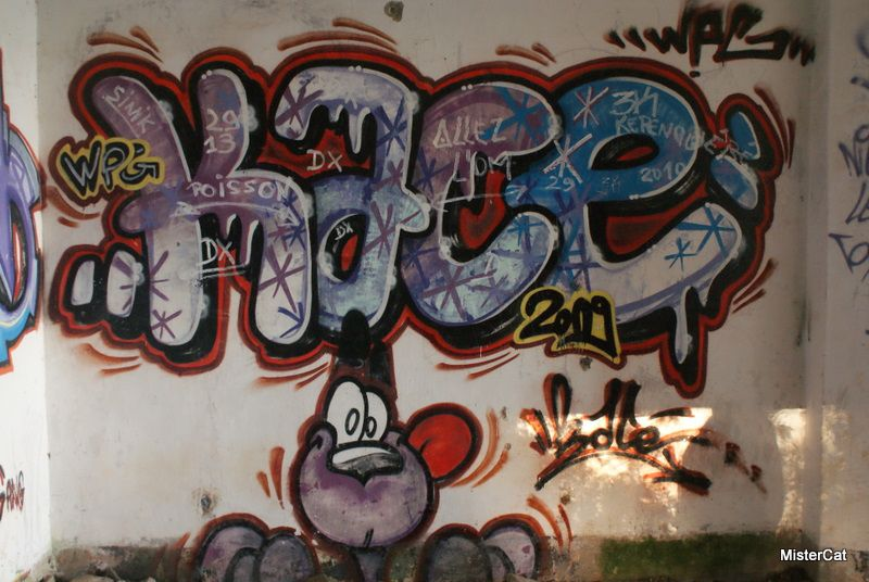 tags brest