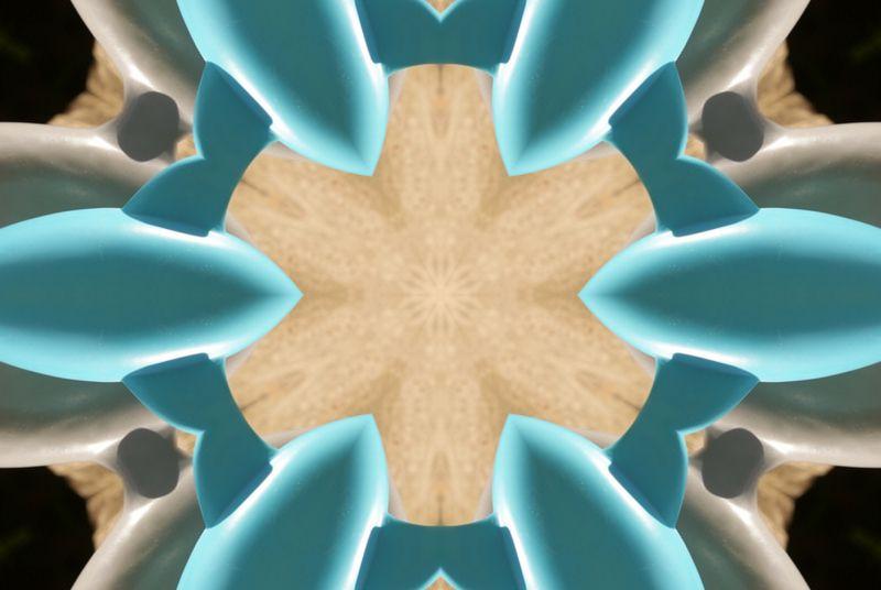 mandala-kaleidoscope-photofarfouille-mistercat