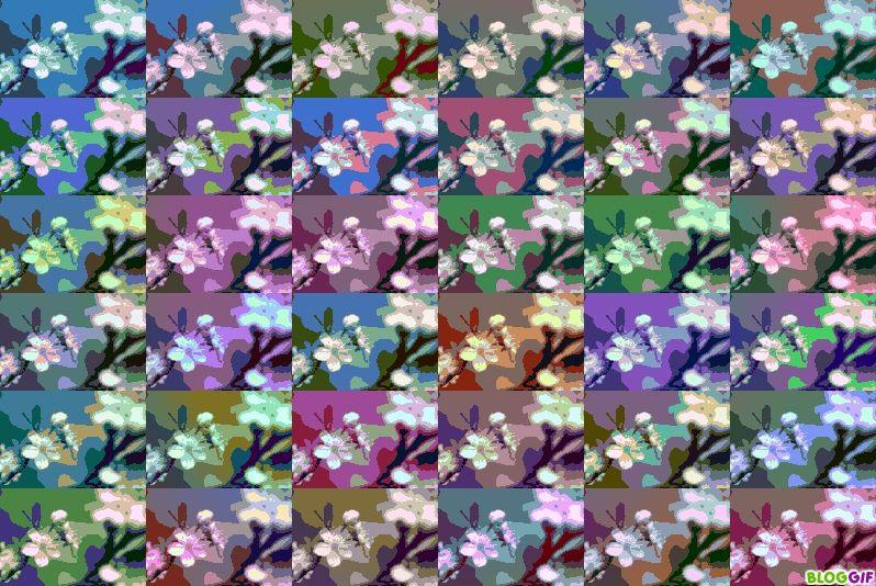 kaleidoscope photofarfouille