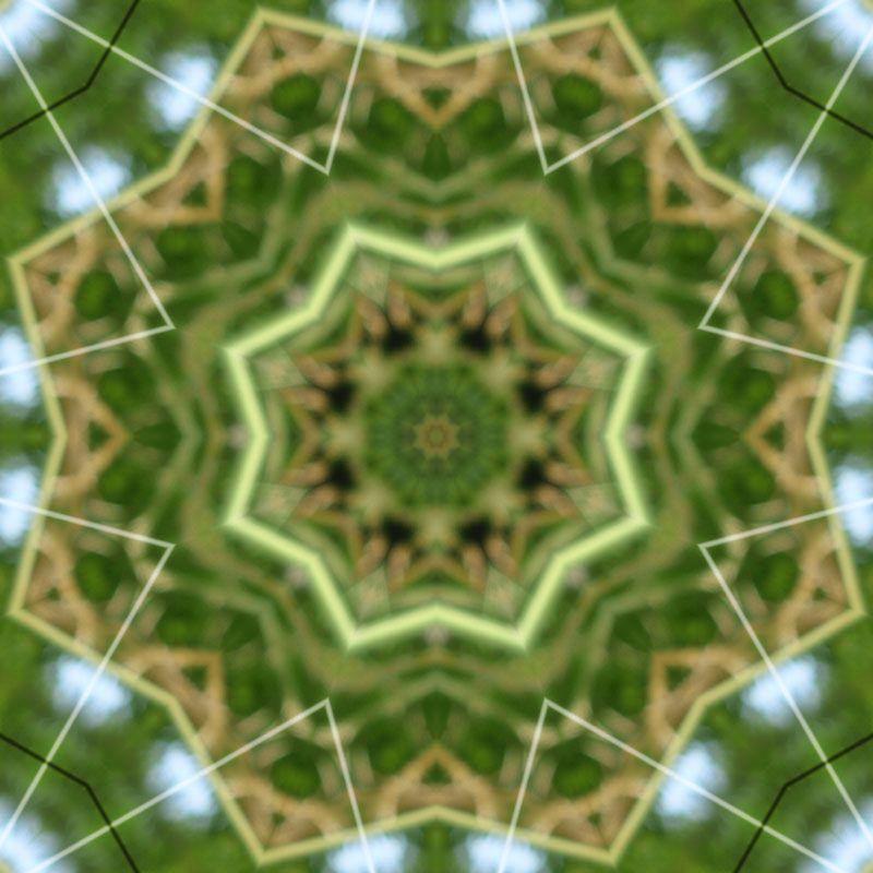 mandala-photofarfouille-kaleidoscope-nature