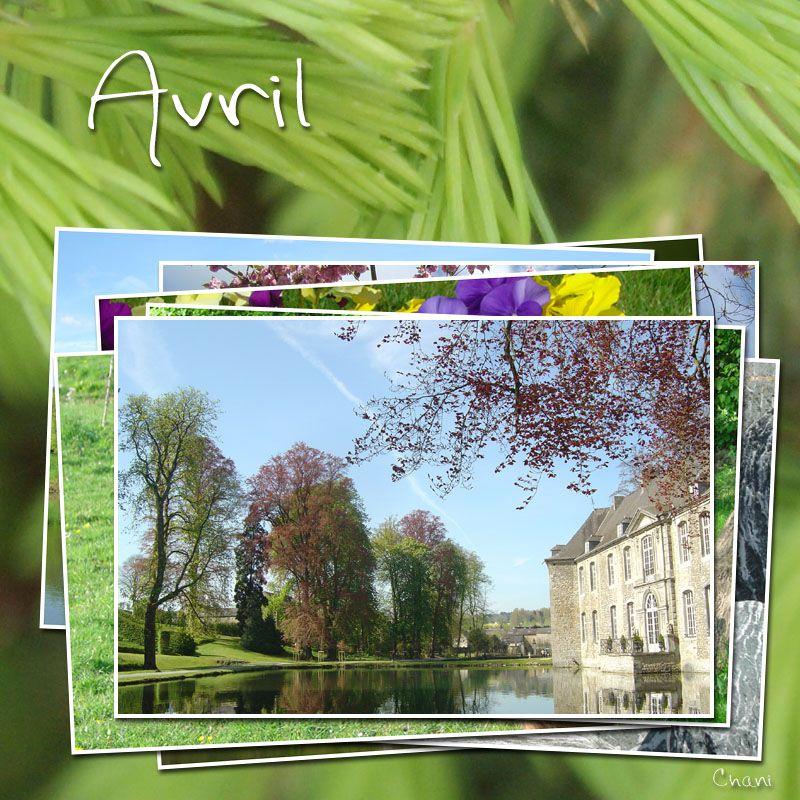 photo-image-avril-photofarfouille-nature-18