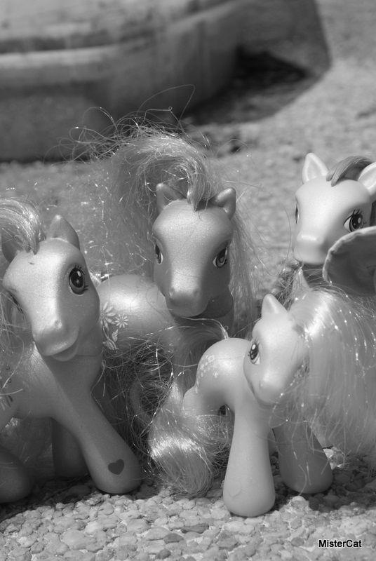 petit poney hasbro little pony
