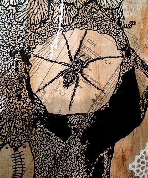 arachn.jpg