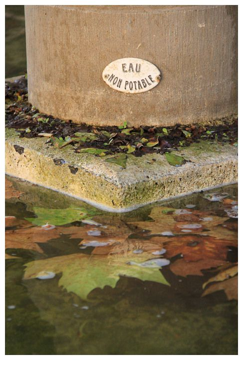 fontaine-d-automne.jpg