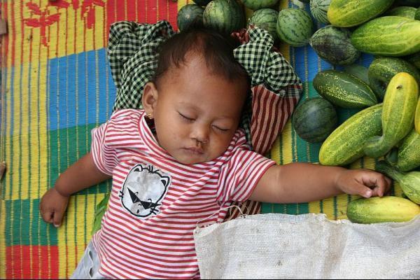 273-bebe-dort-dans-les-legumes