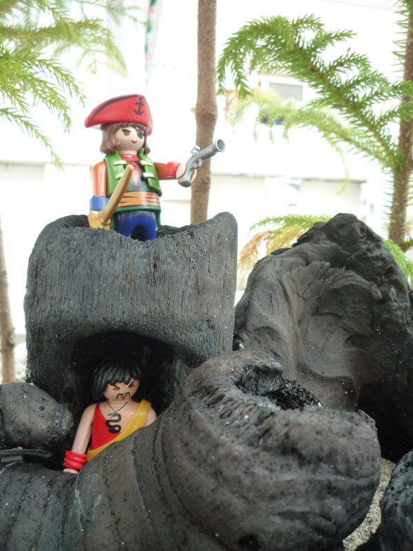 pirates playmobil 8