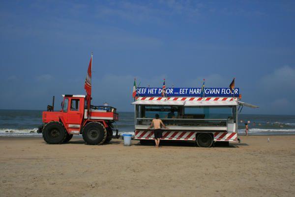 Zandvoort---Pays-Bas---Camion----poissons---Jennifer-Moreau.jpg