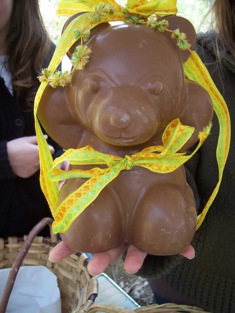 photo paques - ours chocolat