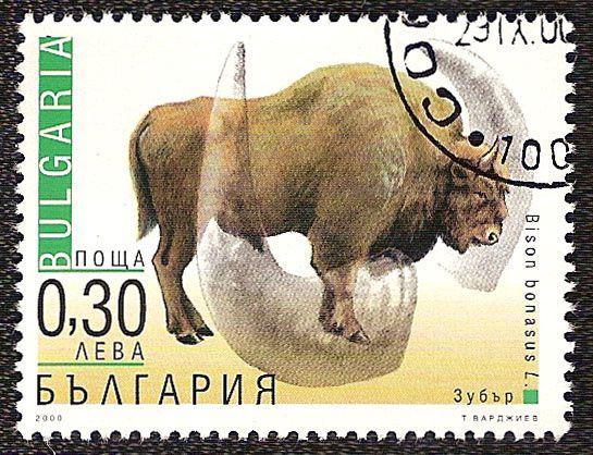 Timbre nature : bison europeen bison bonasus timbre bulgarie