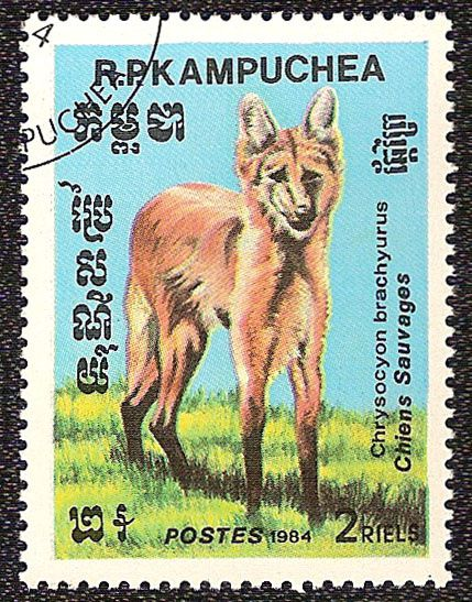 Timbre nature : chien sauvage timbre kampuchea