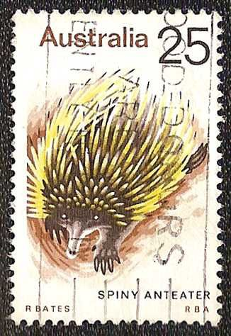 Timbre nature : echidna - anteater epineux