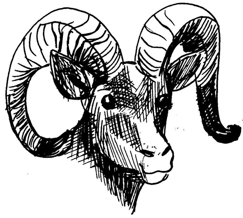 Pin coloriage taureau espagnol a imprimer gratuit on pinterest - Coloriage espagnol ...