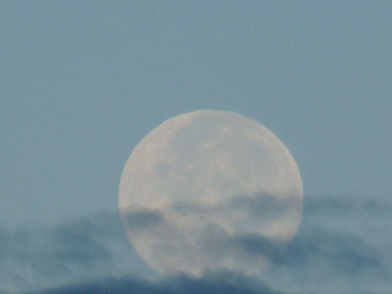 jour de plaine lune