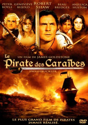 Le pirate des caraibes
