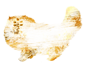 img-chat-persan2.png
