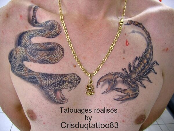 Tatouage serpent et scorpion cristattoo83 - Tete de serpent dessin ...