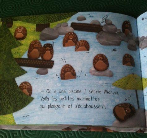 marmottes-1.jpg