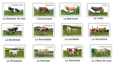 timbres-vaches-small--1-.jpg