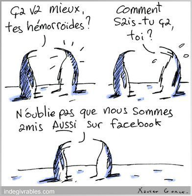 indegivrables-dessin-facebook.jpg