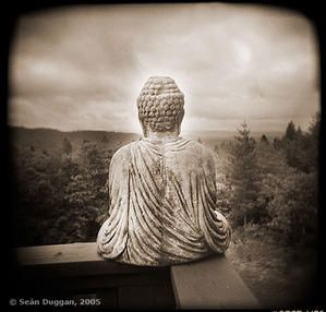 buddha_with_view.jpg