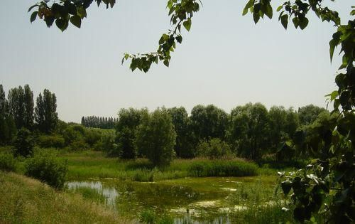Parc du Sausset, photo Raincy-Nono