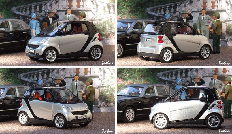4324GR Smart Fortwo coupe