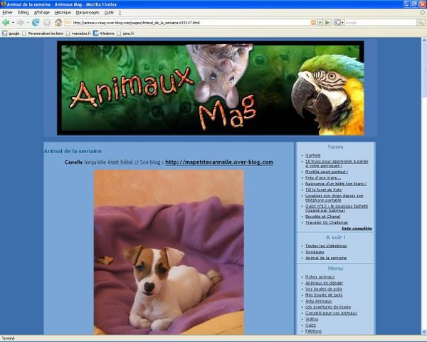 Animaux Mag