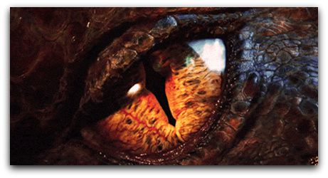 smaug-eye-feature-001.jpg