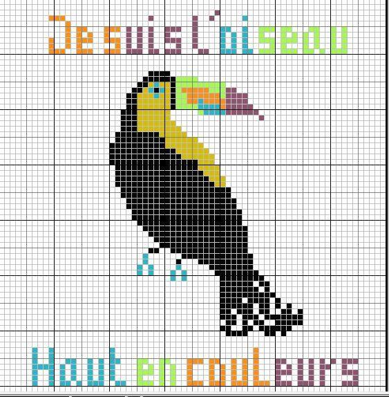 toucan-copie-1.jpg