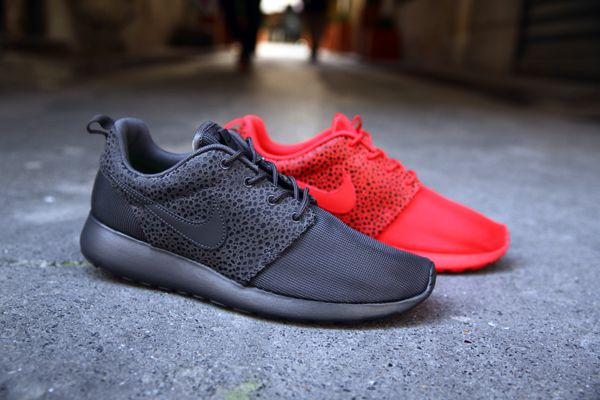 ROSHE-RUN-SAFARI 4168