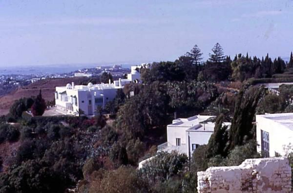 villas-carthage-1-copie-1.jpg