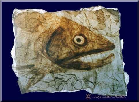 Art animalier: Poisson, dessin par collage, jeux de transparence - Arts et sculpture: artiste peintre, dessinateur, sculpteur