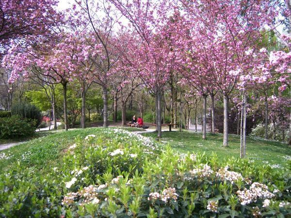 La couleur des amoureux les peintures de boutiali for Jardin japonais 78