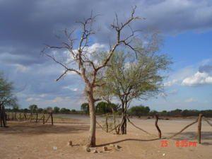 Type de paysage dans la région. Photo prise en novembre 2006.