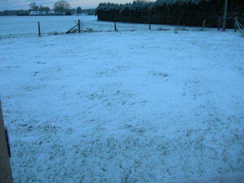 neige3001101.jpg