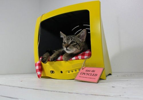 Upcycled-Television-Pet-Bed-1.jpg