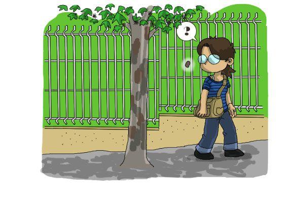 le-blog-de-danao-a-la-peche-3.jpg
