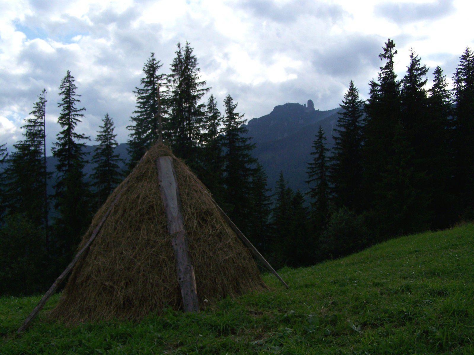 Meule, forêt et montagne, Moldavie roumaine