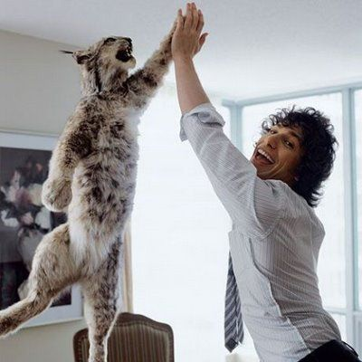 High-five-cat.jpg