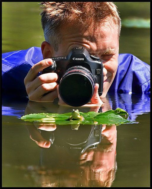 photographe grenouille