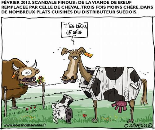 findus bd humour cheval