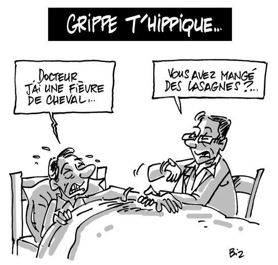 findus-grippe-hippique.jpg