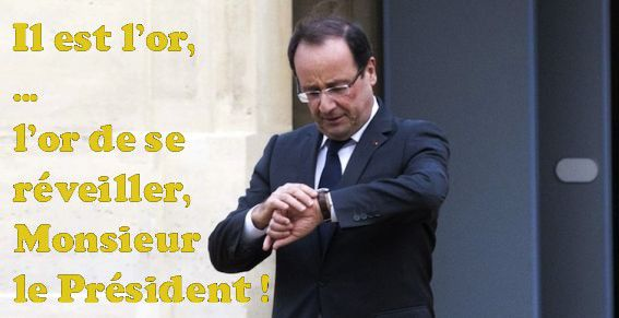hollande-l-or-de-se-reveiller-or.jpg