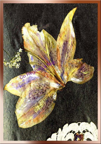 papillon-au-naperon-detail.jpg