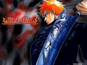 bleach 141 vostfr mangas fr v3 la source. Black Bedroom Furniture Sets. Home Design Ideas