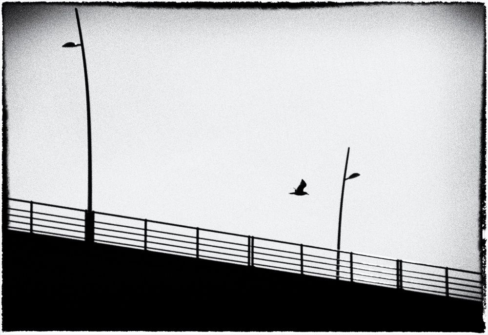 Pont--1000.jpg