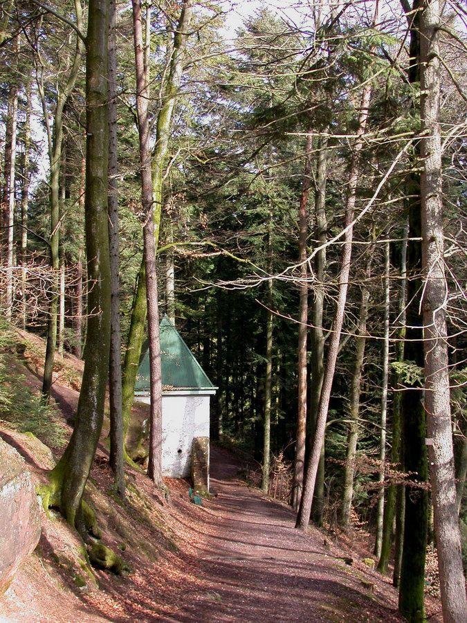 Deux sites caractéristiques de la montagne de l'Avison : la Chapelle de la Roche et la fontaine Saint-Georges