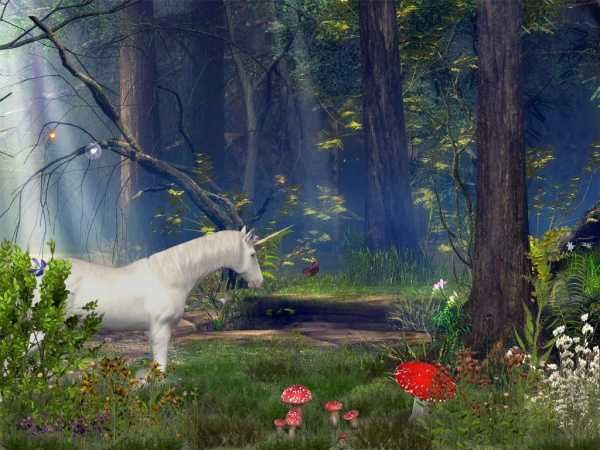 enchanted-forest-animated-screensaver.jpg