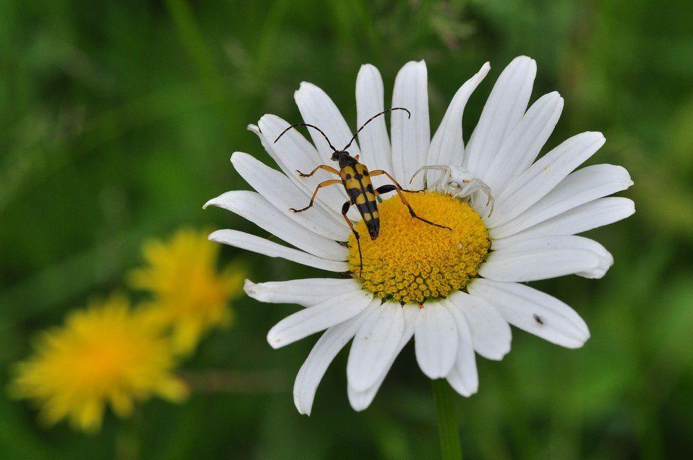 blog3-2012-8544.jpg